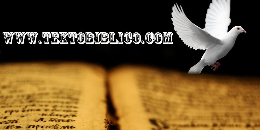 www.textobiblico.com